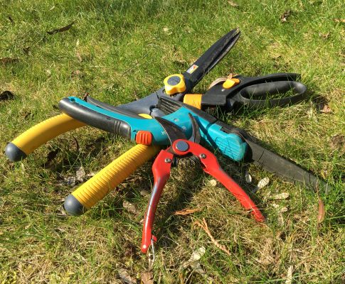 Ako vybrať záhradné nožnice